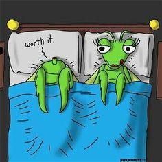 lou broclain sex praying mantis in Rotherham