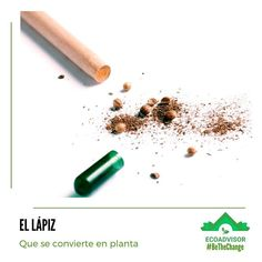 ECOADVISOR | Be the CHANGE (@ecoadvisor_) • Fotos y vídeos de Instagram Led Pencils, Cool Notebooks, Eco Friendly Paper, Creativity And Innovation, Packaging Design Inspiration, Biodegradable Products, Coloring Books, Stationery, Geek Stuff