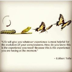 eckhart tolle a new earth quotes - Google Search