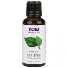 #Her Suppz #TeaTreeOil has been a favorite among Australians for centuries. Only in recent years however, has it gained popularity in #aromatherapy. With #strong #antiseptic and germicidal properties, Tea Tree is now used for a number of applications ranging from cosmetic to disinfectant. NOW Tea Tree Oil is highly concentrated , and should be handled with care.Use coupon code HERCHRISTMAS10 at checkout to get 10% off!