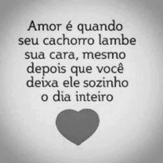 Amor é quando seu...
