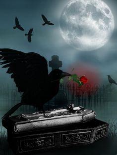 Ravens Grave by AnOtherSunrise.deviantart.com on @deviantART