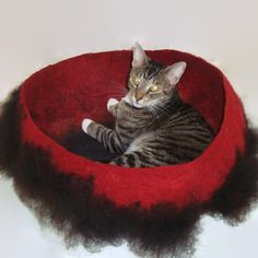 Can't wait to receive my new kitty cat bed from Etsy, Felted Cat Bed Wool Cat Basket  Sheltland Black  by WraptCats