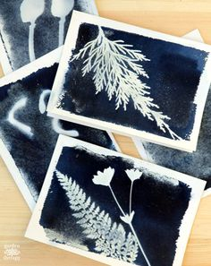 Preserve leaves and flowers from your garden with sun print cards using this traditional photography process that produces a brilliant blue print!