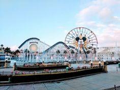 Here's what it's like to run a Disney race. Disney Races, Run Disney, Running Magazine, Before Running, Running Women, Ferris Wheel, Need To Know, Fair Grounds, Racing