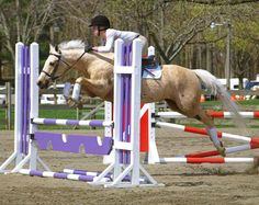 """Judge Rob said that there was something """"sensational""""about this pair's first time in the jumpers."""
