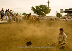 Saddle bronc rider bucked off at Miles City Bucking Horse Sale, Miles City Montana