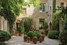 GardeningAtTheAdore: beautiful stone. beautiful courtyard. beautiful topiary!....
