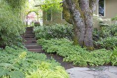 Lovely timber steps
