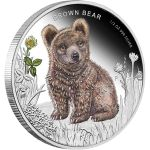 2013 Tuvalu oz Proof Silver Forest Babies (Brown Bear) - Gold and Silver Silver Coins For Sale, Gold And Silver Coins, Lion Africa, Canadian Coins, Year Of The Snake, Presentation Cards, Great Horned Owl, Proof Coins, Effigy