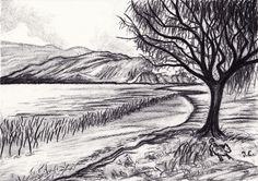 Artist inspiration due Nov Jos Eertink; love simple marks, quick lines and darkness of tree contrasted with lighter background Pencil Sketches Landscape, Landscape Drawings, Cool Landscapes, Charcoal Sketch, Charcoal Art, Charcoal Drawings, Realistic Drawings, Easy Drawings, Making Charcoal