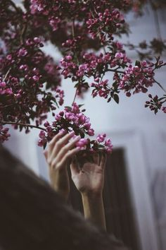 """❂""""There is a way that nature speaks, that land speaks. Most of the time we are simply not patient enough, quiet enough to pay attention to the story. """""""