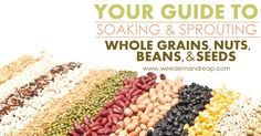 Your Guide to Soaking and Sprouting Whole Grains, Beans, Nuts, and Seeds