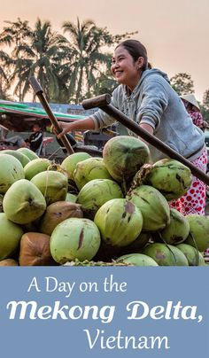 A Day on the Mekong Delta, Vietnam. From Can Tho, visit the floating markets, see the rice fields, visit a snake farm, and eat some of the best pineapple ever!