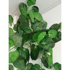 Geranio artificial colgante sin flor. Artificial, Plant Leaves, Flower, Leaf Pendant, Geraniums, Elegance Fashion, Leaves, Plants
