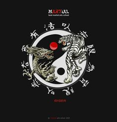 Martial Arts Yin And Yang...oh just look at it...awesome!