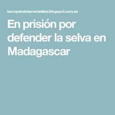 En prisión por defender la selva en Madagascar
