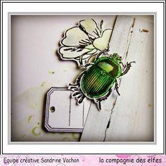 Tampon scrarabée, Tampons La compagnie des elfes.* #scrapbooking #rubberstamp #scrapbook #insects
