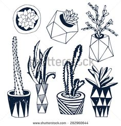 Succulents in DIY concrete pots in scandinavian style. Home decoration.Vector illustration