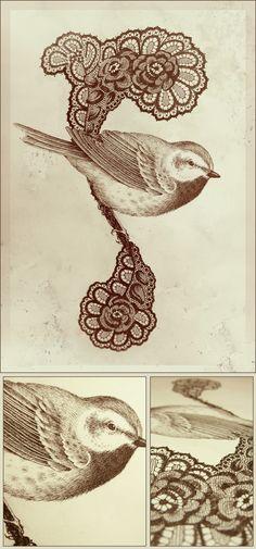songbirds by Teagan White, via Behance