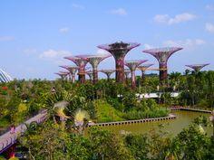Garden By The Bay Bus marc quinn: planet. gardensthe bay, singapore   singapore, bus