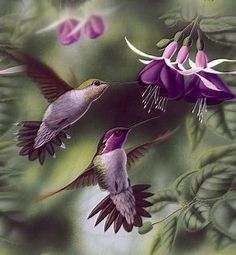 EXOTIC BIRDS. I pick this picture of two exotic birds because this remind me luck and happiness. the pink and purple act so unnatural and divers.