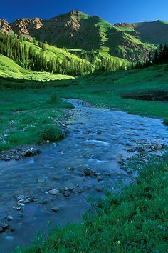 Rustler Gulch near Crested Butte, Colorado, USA
