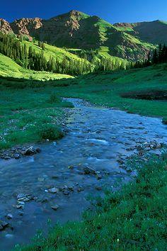Rustler Gulch near Crested Butte, Colorado. :)
