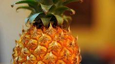 Ananasowy ekspres online dating