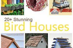 Hometalk :: Attracting birds and butterflies :: Valerie's clipboard on Hometalk