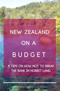 New Zealand on a Budget