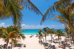 Playa Del Carmen in Mexico is turning towards a new kind of holiday option in order to preserve its ecological and cultural heritage.