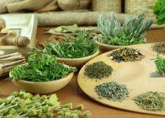 какие травы чистят сосуды и улучшают мозговое кровообращение