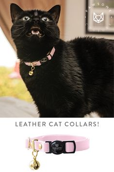 A stunning Cat Collar made from beautiful soft leather with a quick release safety buckle, our breakaway leather cat collars are super comfortable against your cats skin. Leather Cat Collars, Cat Skin, Soft Leather, Safety, Fancy, Cats, Animals, Beautiful, Security Guard