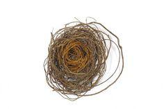 Catriona Pollard - Manipura www.TheArtofWeaving.com.au You have the power to choose. I choose love and light. What do you choose? #contemporarydesign #weaving #basketry #love #sculpture #art #interiordesign #contemporaryart #handmade #handwoven #foundobjects #foundobjectsculpture #fibreart #fiberart #artist #basketryartist #australianbasketry #fibreartist #basketart #woven #catrionapollard