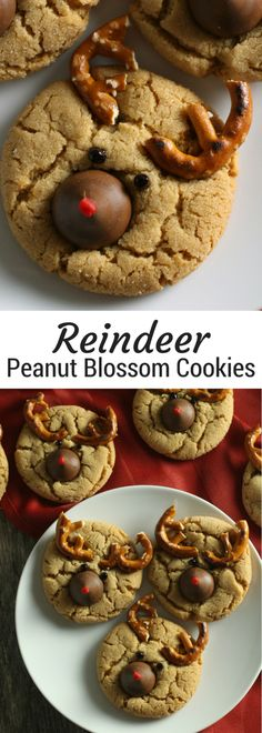 Reindeer Peanut Blossoms | Christmas peanut blossom cookies | Peanut Butter Kiss Cookies for Christmas | Christmas cookie trays and cookie swaps or exchanges #christmascookies #christmasrecipes