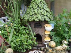 #mini #minipflanzen #zimmerpflanzen #dekobaumhaus #vogel #pilze #deko #dekoidee #erlebnisgaertnerei #hoednerhof #blumenwelt #ebbs #mils #tirol Bonsai, Bird, Outdoor Decor, Home Decor, Mini Plants, Roses Garden, House Plants, Birds, Cactus
