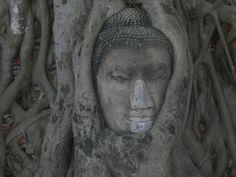 Ayuttaia,  Thailandia