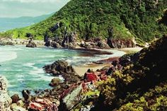 The Otter Hiking Trail is one of South Africa's most popular trails and is known world-wide. It is a five-day trail. Walking Routes, Holiday Wishes, Otters, Hiking Trails, South Africa, Destinations, Sun, Popular, Adventure