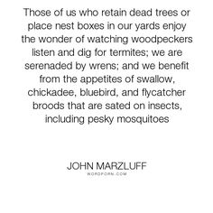 """John Marzluff - """"Those of us who retain dead trees or place nest boxes in our yards enjoy the wonder..."""". science"""