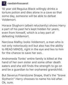 Regulus Black, Voldemort, Horace Slughorn, Narcissa Malfoy, Draco Malfoy, Ted Tonks, Nymphadora Tonks, Teddy Lupin, Bellatrix Lestrange, Harry Potter, hp