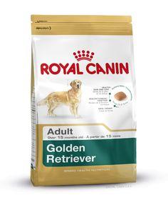 GOLDEN RETRIEVER ADULT wurde speziell für den ausgewachsenen #Golden #Retriever ab dem 15. Monat entwickelt. Borretschöl und Biotin unterstützen ein weiches Haarkleid und fördern ein glänzendes Fell. Schwefelhaltige Aminosäuren fördern die Produktion von Keratin und können so das Fellwachstum unterstützen. http://www.royal-canin.de/hund/produkte/im-fachhandel/nahrung-fuer-rassehunde/ausgewachsene-rassehunde/golden-retriever-adult/