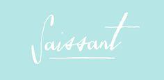 Fonts - Saissant by Magpie Paper Works - HypeForType Font Shop