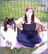 Secrets to Dog Training   Dog Obedience Training to Solve Dog Behavior Problems