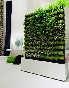 With the increase in the trend of vertical garden in home decoration, moss wall art and graffiti are also favored. Vertical gardens & moss walls are the best home decoration trick to turn out your home into a miniature farm. Garden Wall Designs, Vertical Garden Design, Vertical Gardens, Vertical Planter, Sliding Room Dividers, Diy Room Divider, Wall Dividers, Space Dividers, Divider Ideas