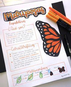 Lettering Ideas, School Notebooks, Drawing Journal, Pretty Notes, Handwriting, Holi, Origami, Vsco, Bullet Journal