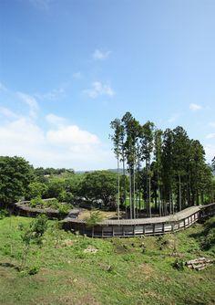 植樹された桜は4千本! 野外ミュージアムの250年計画とは? 福島づくり 「colocal コロカル」ローカルを学ぶ・暮らす・旅する