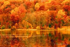 Pennsylvania...in the fall.Born and raised in this Beautiful state.No matter where I live...it will always be closest to my heart and will always be home.