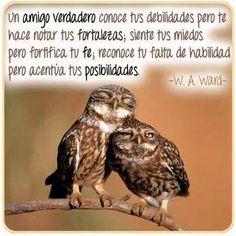 Un verdadero amigo conoce tus debilidades pero te hace notar tus fortalezas