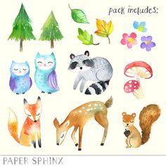 Woodland Animals Clipart Watercolor Forest Animals Clip Art